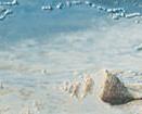 Listwa-Maxima-Blue-1-44,8x10